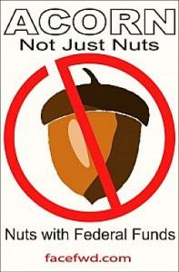 acorn-nuts2